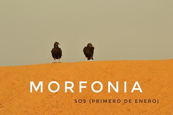 Morfonia