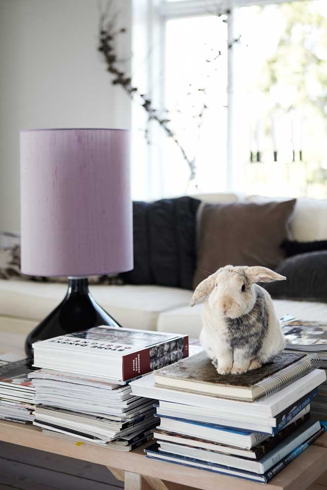books and bunny, Copenhagen by Kira Brandt