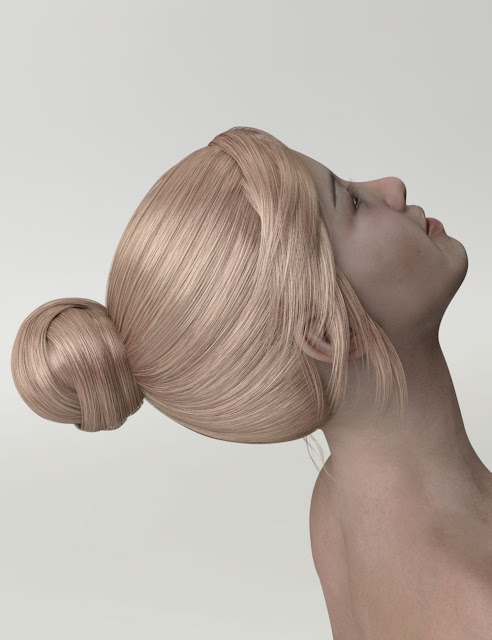 HY Updo Hair for Genesis 3 Female