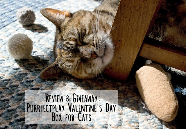 Review & Giveaway: Purrfectplay Valentine's Day Box for Cats