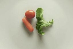 Jurus Diet Mayo Sukses 2 Minggu