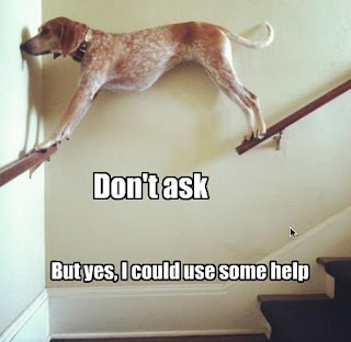 Dog Humor, I could use a little help here