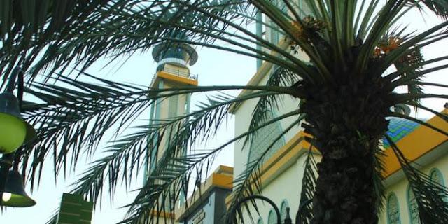 Banyak yang Salah Menafsirkan, Seperti Inilah Penjelasan Larangan Menanam Pohon di Masjid