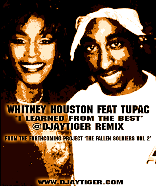 Whitney Houston Feat Tupac Shakur - I Learned From The Best (Dj Tiger Blend)