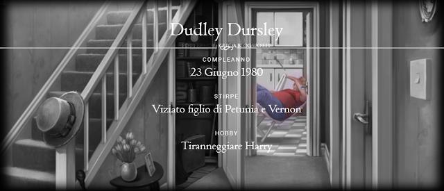 Scheda di Dudley Dursley