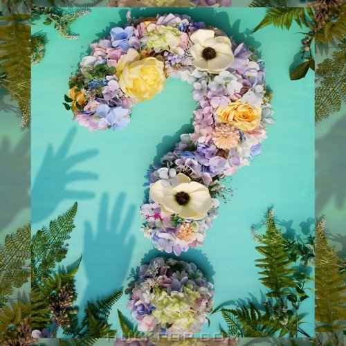 Yonko – Question Mark (Feat. PLZY, JOMALONE) – Single