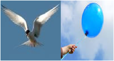 Difference b/w Flying and Floating