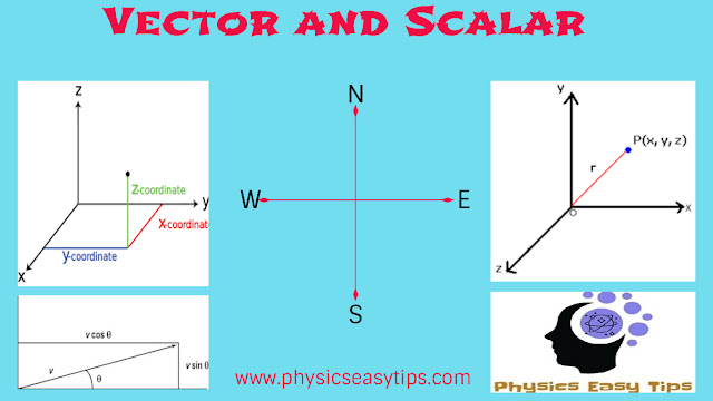 Basic Concept of Vector and Scalar
