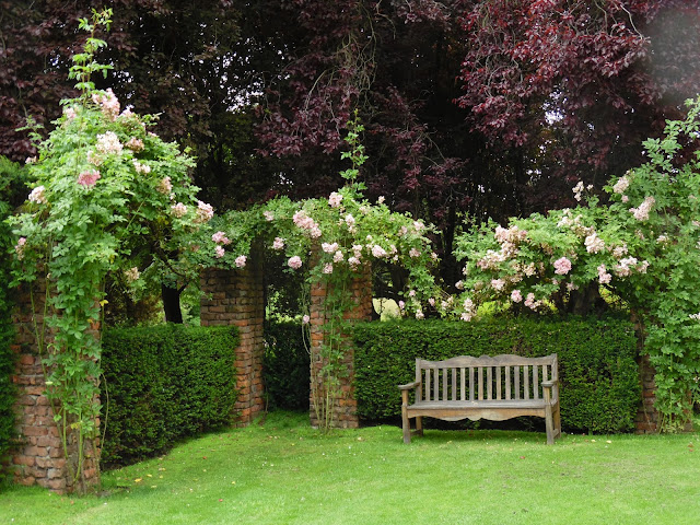drewniana ławka w ogrodzie