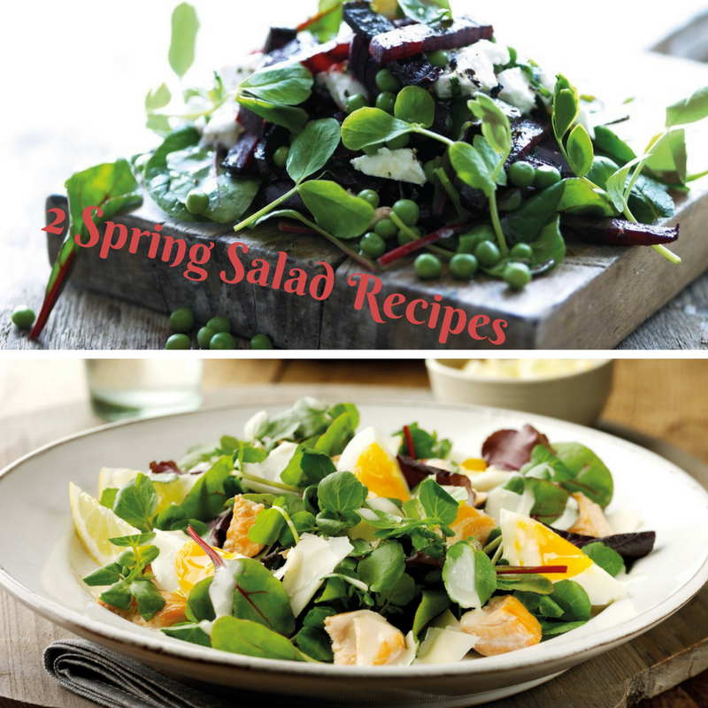 2 Spring Salad Recipes