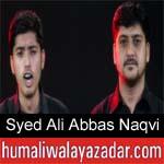 https://www.humaliwalyazadar.com/2018/09/syed-ali-abbas-naqvi-nohay-2019.html