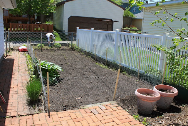 Our cleared backyard garden, ready for planting.