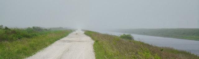 Lloviendo en los Everglades