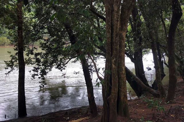 Bhadra river, Balehonnur-Kalasa road