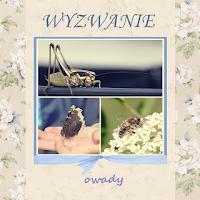 http://szuflada-szuflada.blogspot.com/2016/05/wyzwanie-5-owady.html