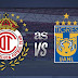 Toluca vs Tigres EN VIVO - ONLINE Por la jornada 14 de la Liga Mx. HORA Y CANAL