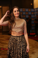 Actress Model Sarah Hopkins Latest Pos in Lehenga Choli at SIIMA Short Film Awards 2017 .COM 0002.JPG