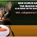 REVIEW : SET KURUS TERBAIK!!!