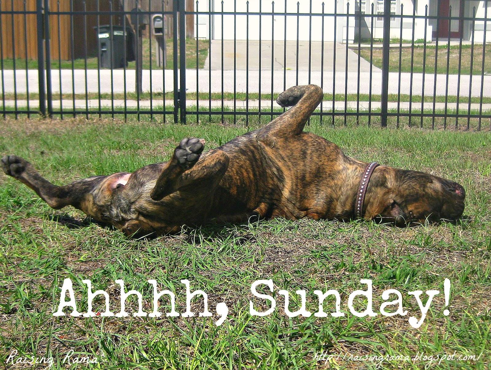 This Blog Has Moved To Http://raisingrama.com/: Happy Sunday