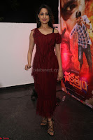 Pragya Jaiswal in Stunnign Deep neck Designer Maroon Dress at Nakshatram music launch ~ CelebesNext Celebrities Galleries 017.JPG