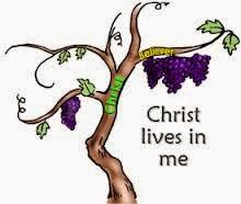 Christ S Faithful Witness I Am The True Vine