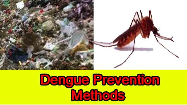 Dengue Prevention  Methods
