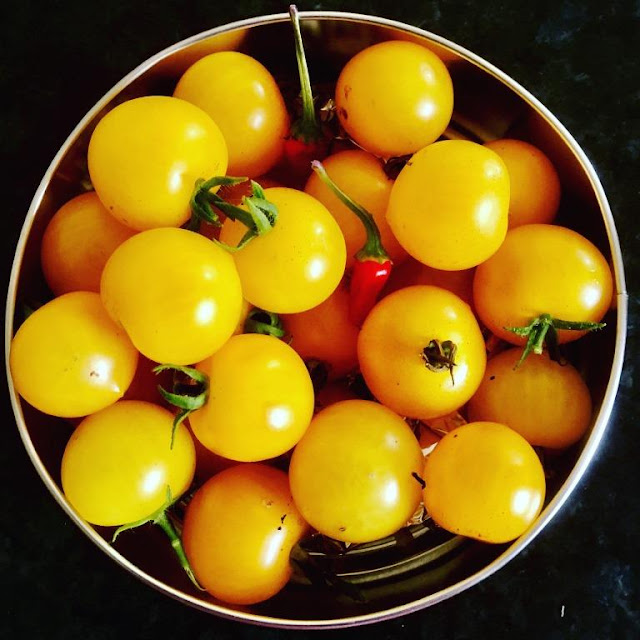 Four Favourite Homegrown Tomato Recipes
