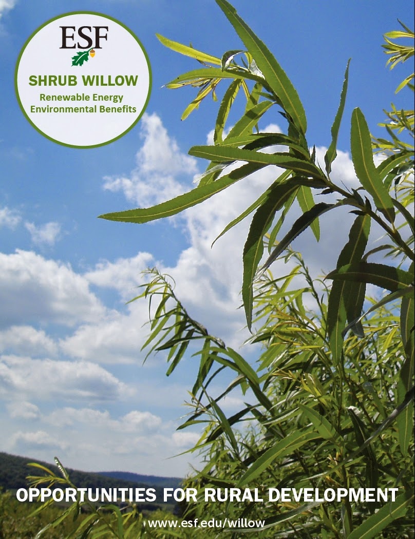 Shrub Willow for Bioenergy, Environmental Benefits and Rural