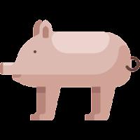 pig-swine-flat-vetarq