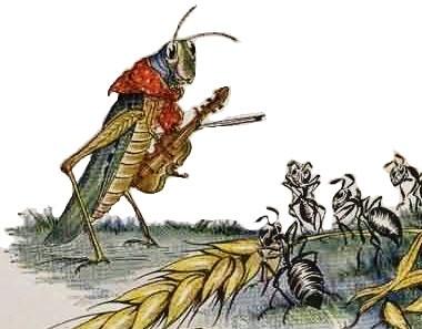 paman belalang