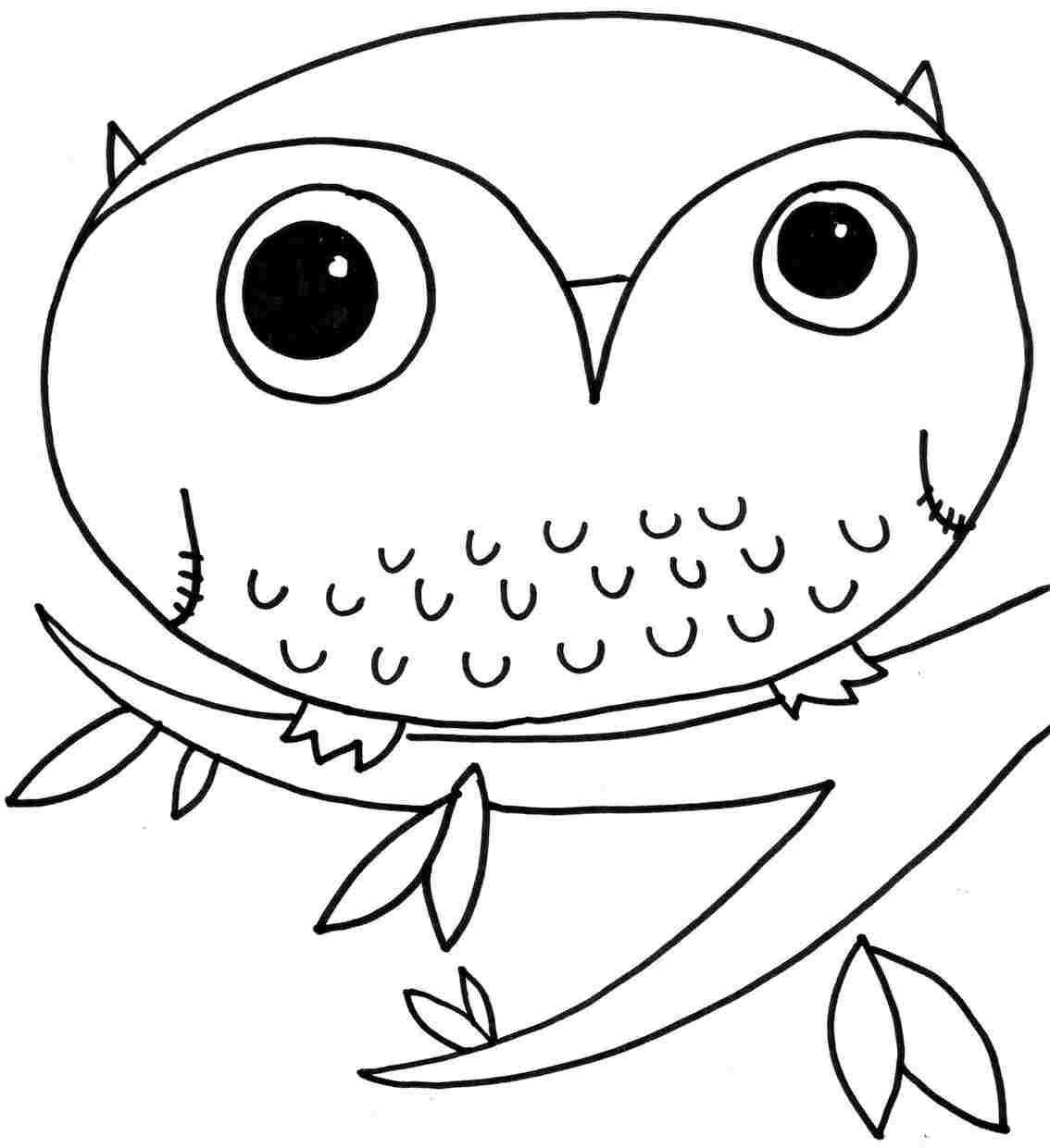 Owl Pictures To Colour Dinocro Info