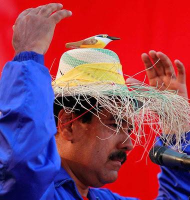 Maduro com passarinho portador de recados de Chávez