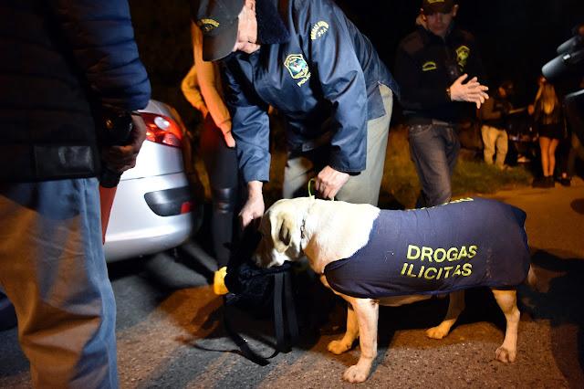 Operativo de prevención: Drogas sintéticas, cocaína y marihuana incautadas en la previa y durante las fiestas en Destino Arena