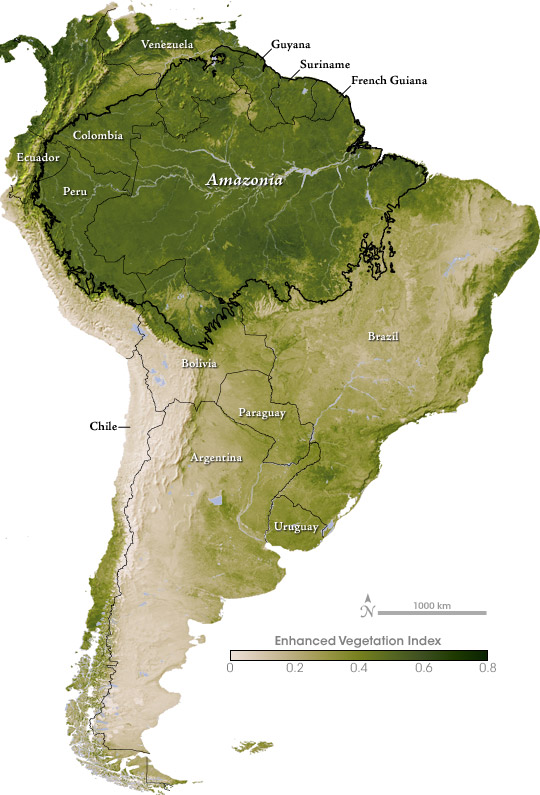 Let's Get Tropical: The Amazon Rainforest of Brazil