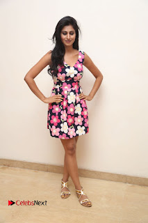Model Shamili Latest Pictures in Floral Short Dress  0252