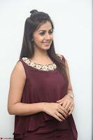 Nikki Galrani in a Brown Shining Sleeveless Gown at Nakshatram music launch ~  Exclusive 099.JPG