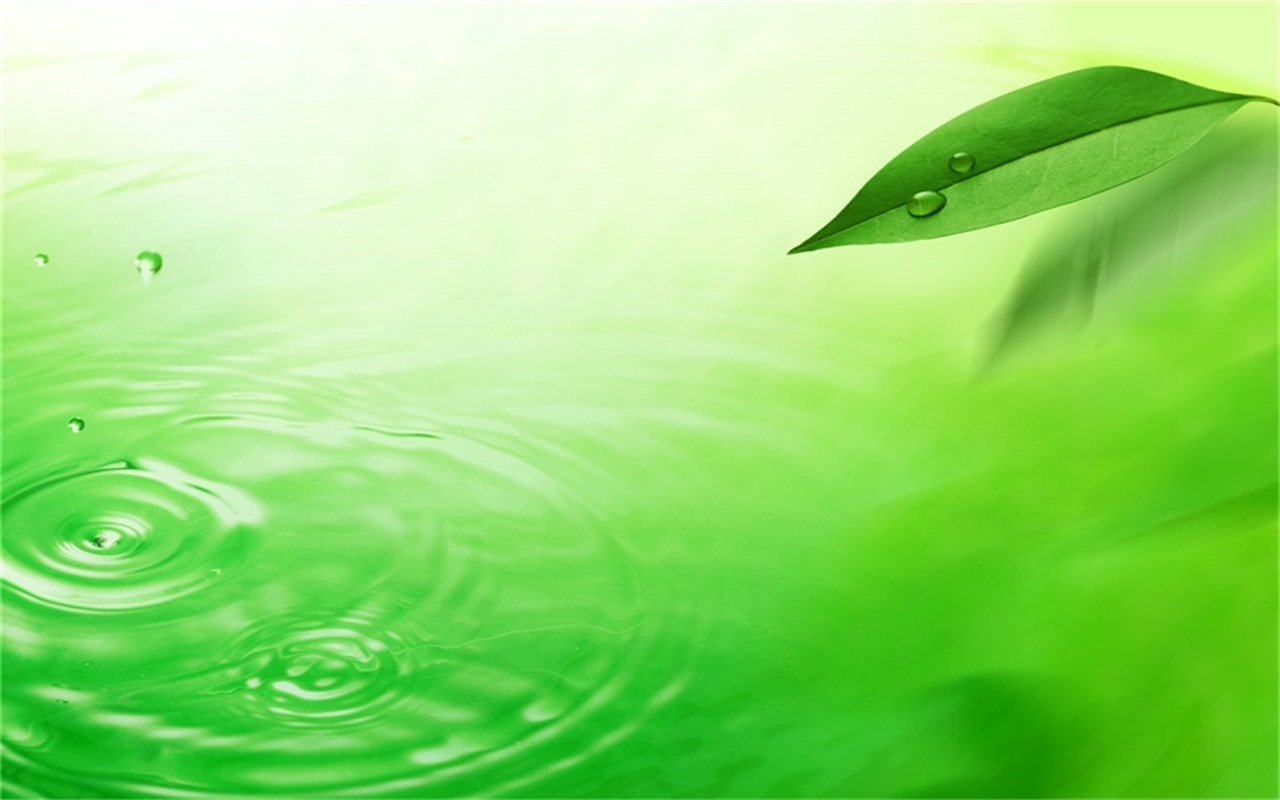 green leaves and dewdrops PPT backgrounds