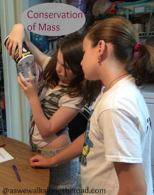 Science ideas for homeschoolers