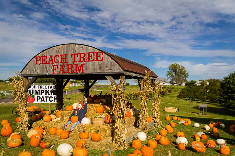 pumpkin patch garden city ks