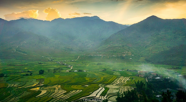 Mu Cang Chai in the summer 2