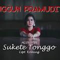 Lirik Lagu Sukete Tonggo - Anggun Pramudita