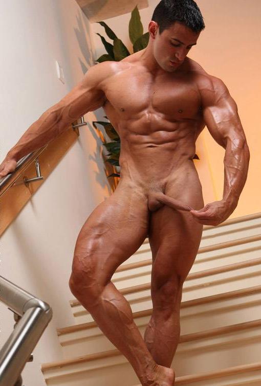 nude-bodybuilder-penis-size
