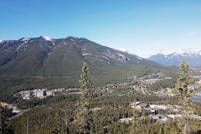 View from Tunnel Mountain