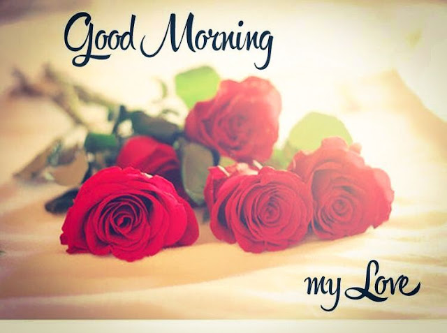 good morning my love,good morning video,good morning song,good morning images,good morning photos,good morning gif,good morning,good morning wishes images,good morning love,good morning love quotes,good morning wishes,good morning quotes,good morning images with nature,good morning wallpaper,good morning whatsapp status video,good morning love images,good morning love images for girlfriend