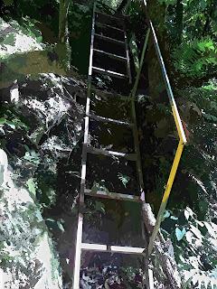 Escadaria em Meio à Trilha  da Cachoeira Gêmeas Gigantes, Parque das 8 Cachoeiras, São Francisco de Paula