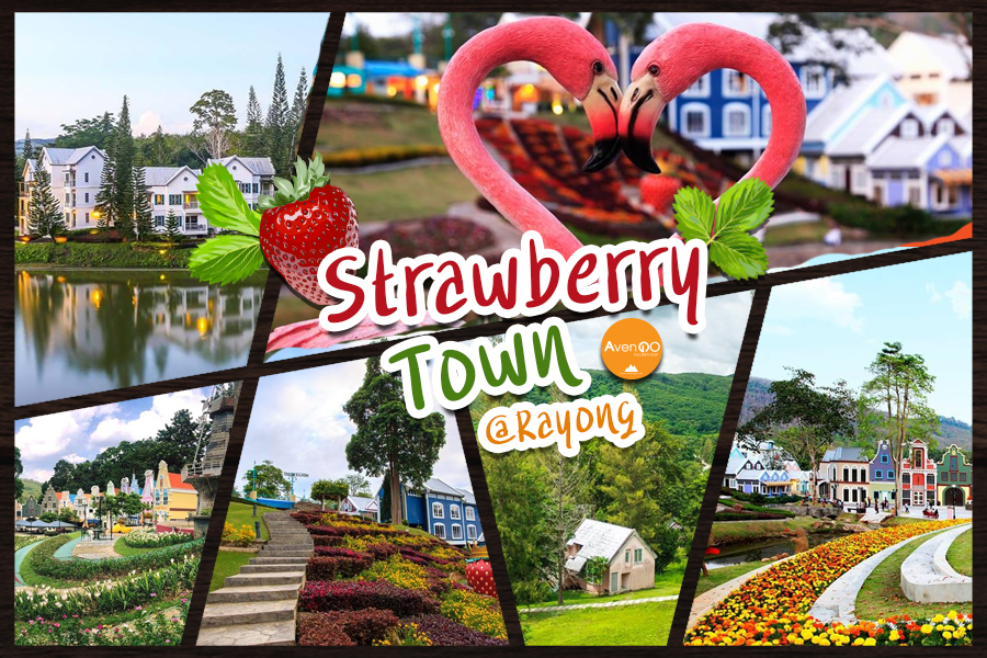 Strawberry Town @Rayong