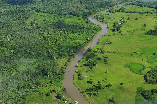 Amazon Rainforest, Facts, Amazon River, Brazil, Arial View, Forest, River, Amazon, Amazon Jungle,