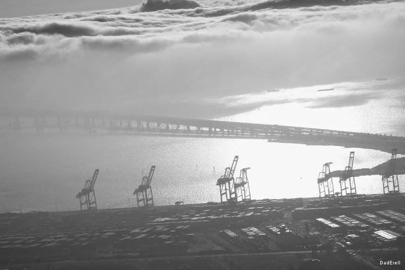 Les grues du Port d'Oakland