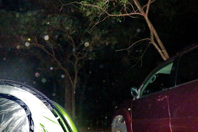 Sturm Nacht Bäume Zelt Wind Auto Abenteuer Gefahr