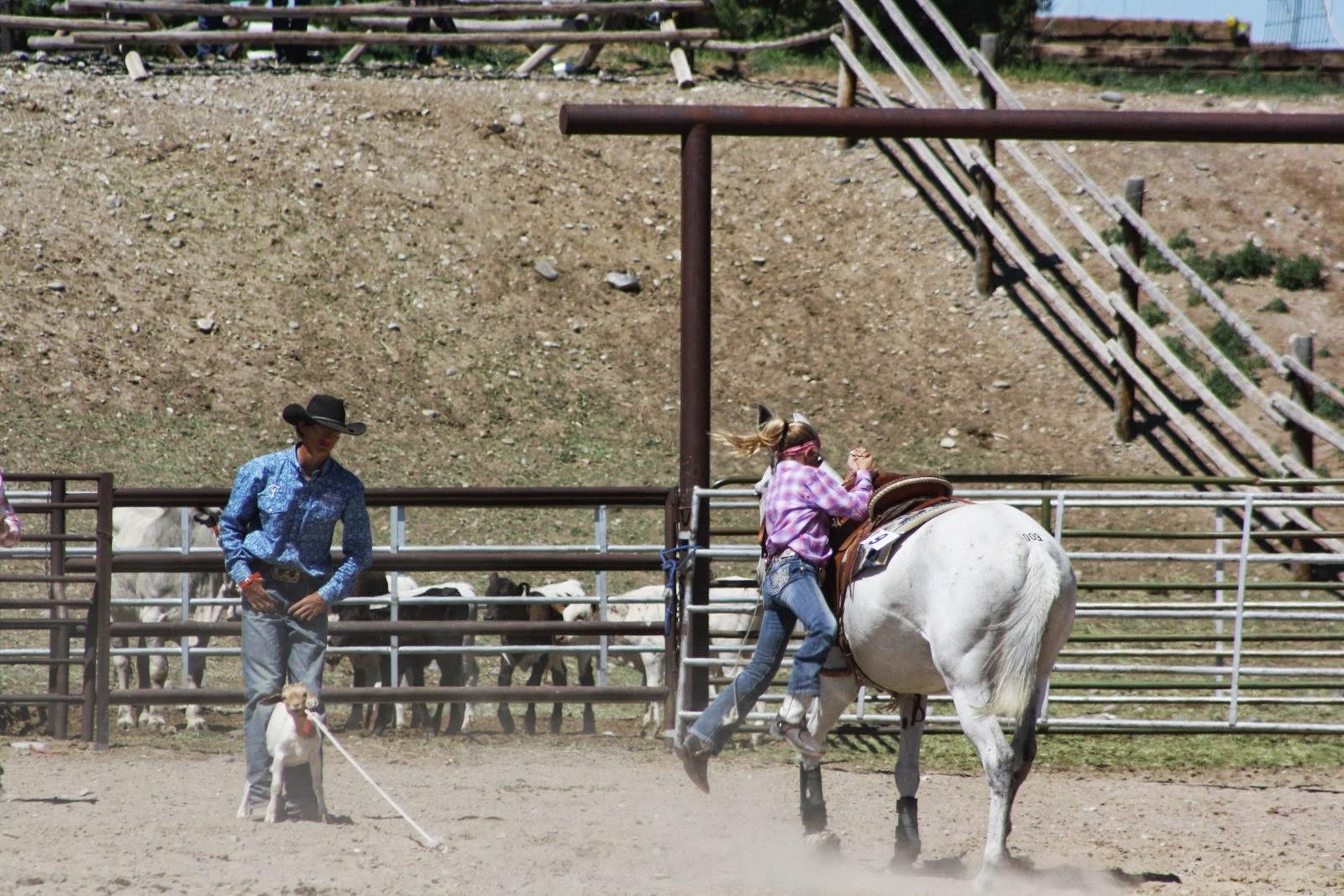 Pairadice Mules Jake Clark Rodeo Pictures